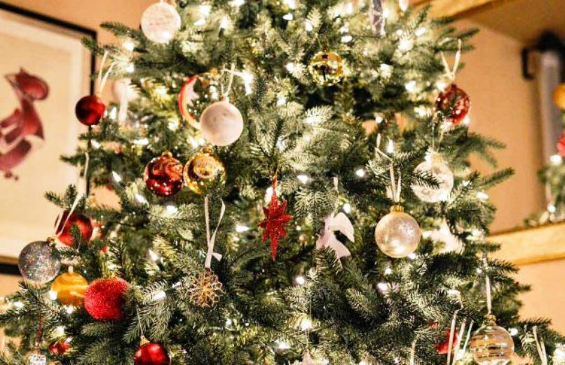 immagine droga nascosta nell'albero di natale