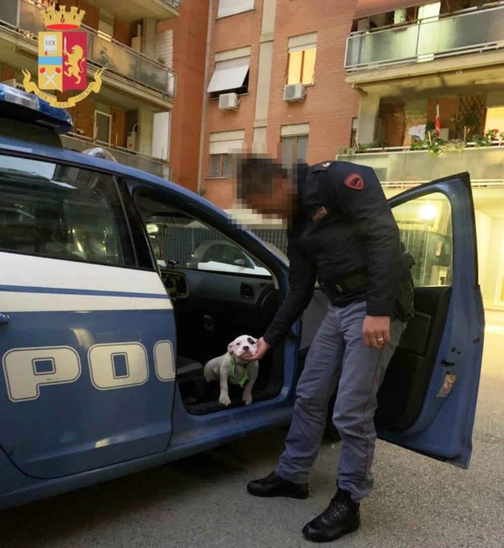 immagine poliziotto e il cane