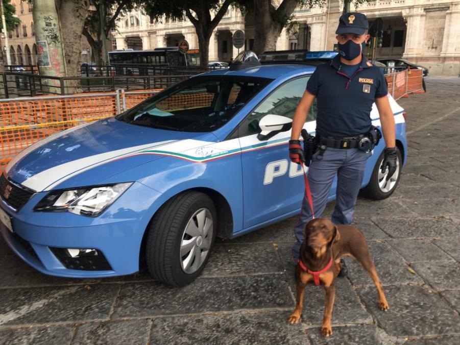 immagine cane maltrattato con ahente di polizia