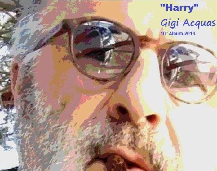 Immagine copertina nuovo album di Gigi Acquas , Harry