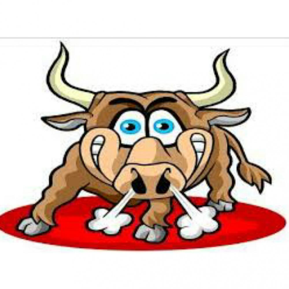 Eccitante per tori, ricoverato