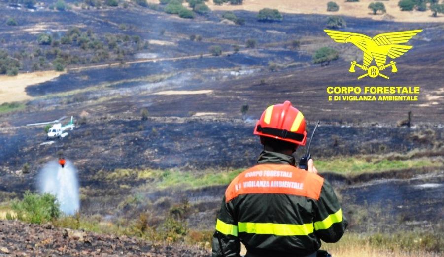 immagine incendio nelle campagne di macomer