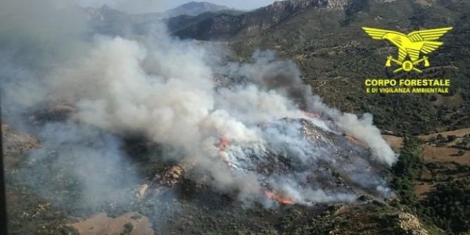 FOTO Corpo Forestale incendio Orotelli