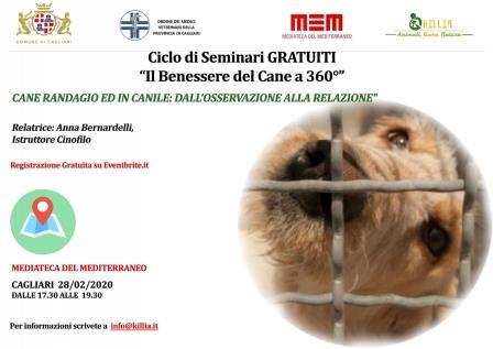 locandina seminario, il benessere del cane