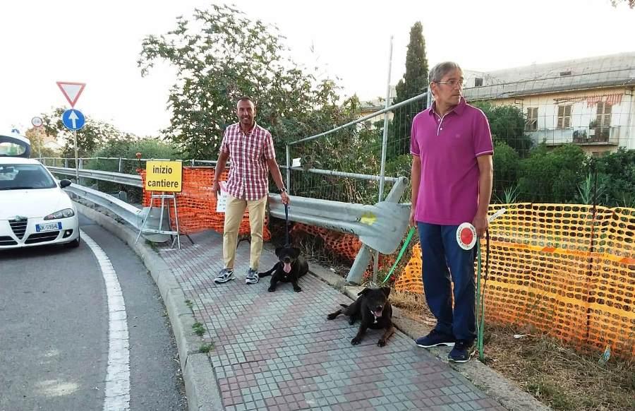 immagine cani ritrovati nell'asse mediano