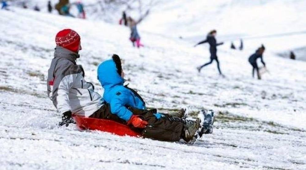 immagine slittino bob da neve schianto contro albero muore un bambino