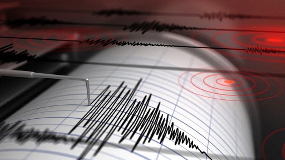 immagine grafico terremoto