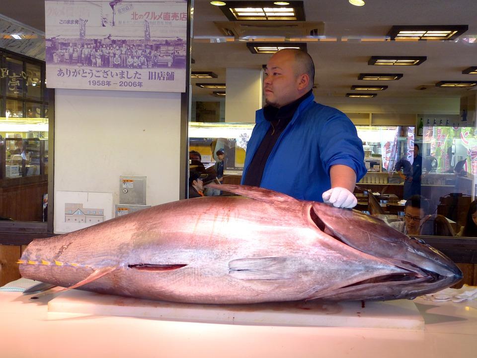immaggine tonno sushi giapponese