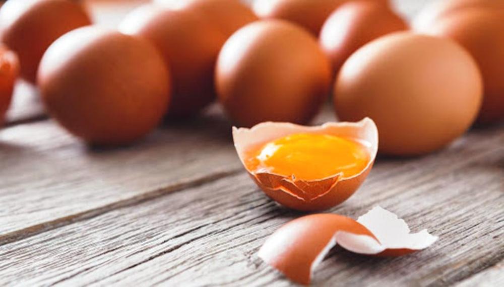 immagine uova sequestrate a sassari