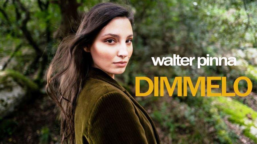 copertina del disco del nuovo brano di Walter pinna dimmelo